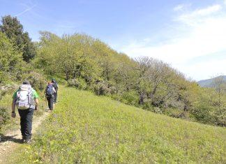 anevenontas trekking arvyla