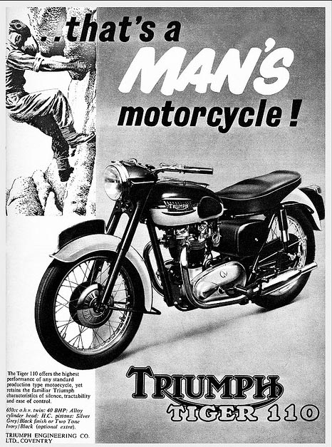 brown-triumph